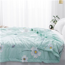 Comfortable - 1pc Bedspread Summer Polyester Floral / Printed Queen ( US $12.49) ,Sage