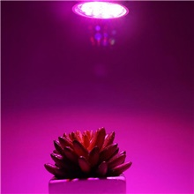 1pc 12 W 230 lm 12 LED Beads Easy Install For Greenhouse Hydroponic Growing Light Fixture 85-265 V 85-265V,E14