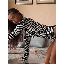 2020 SUMMER Zebra Print High Collar Bodysuit