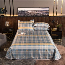 Summer Mat - 3-Piece Set / 1 Bed Sheet and 2 Pillowcases / Ultra Silky Soft Polyester / Luxury Modern Plaid Printed King Size,Light Blue