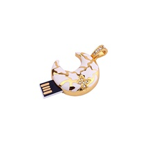 ANT 64GB USB Flash Drives USB 2.0 Creative For Office and Teaching 4 GB