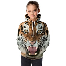 Kids Toddler Girls' Active Basic Tiger Geometric 3D Animal Print Long Sleeve Hoodie & Sweatshirt Brown Brown,3-4 Years(110cm)