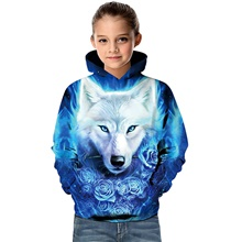Kids Toddler Girls' Active Basic Wolf Geometric 3D Animal Print Long Sleeve Hoodie & Sweatshirt Blue Blue,4-5 Years(120cm)